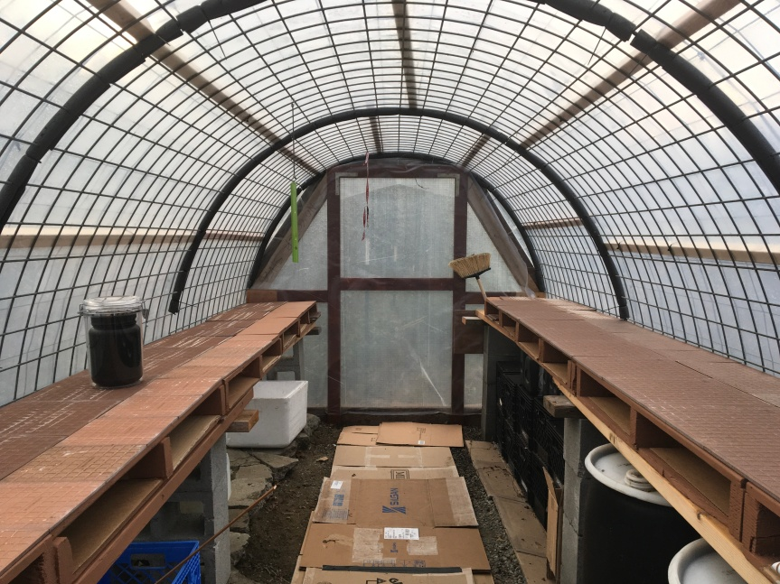 Double Wall Hoop house – Results